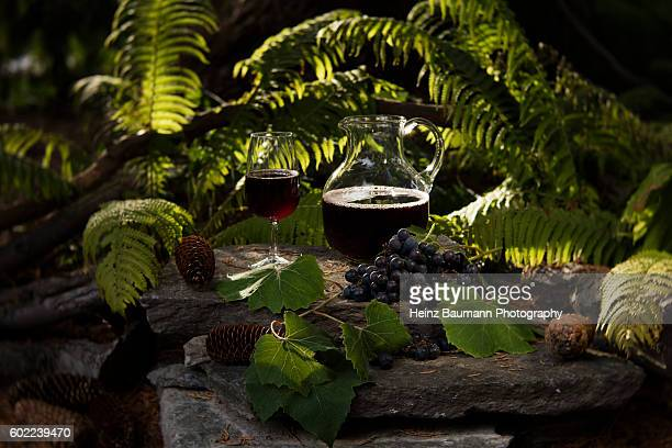 fresh grape juice in a pitcher and glass in the evening sun - heinz baumann photography stock-fotos und bilder