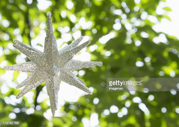 Fresh green and a star-shape ornament