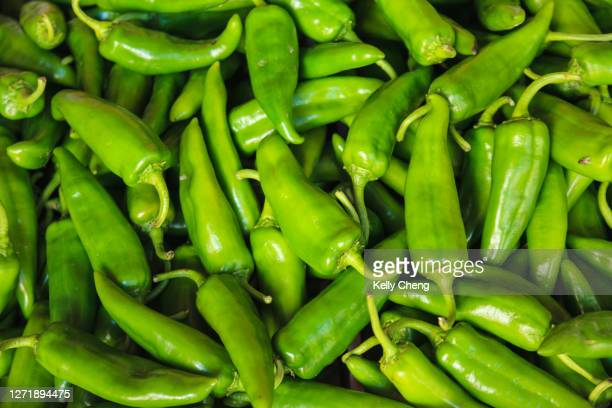 fresh green chilli peppers for sale - green chili pepper stock pictures, royalty-free photos & images