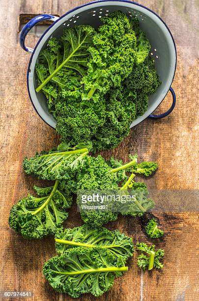 fresh green gabbage in colander on wood - kale stock photos and pictures