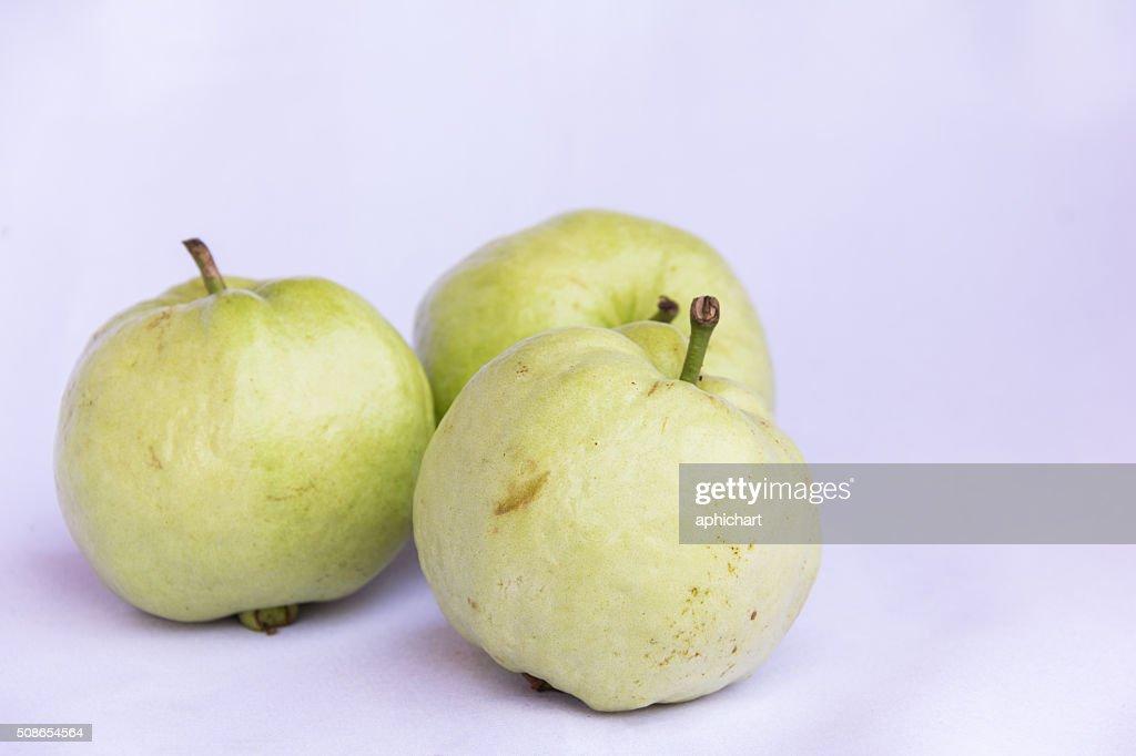 fresh green guava clean fruit : Stock Photo
