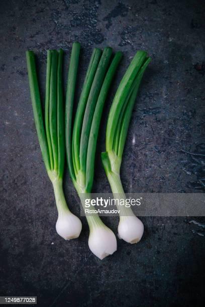 cipolla verde fresca sul vecchio sfondo - cipollina foto e immagini stock