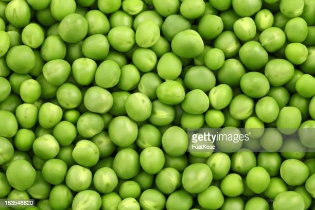 Frische Grüne Erbse