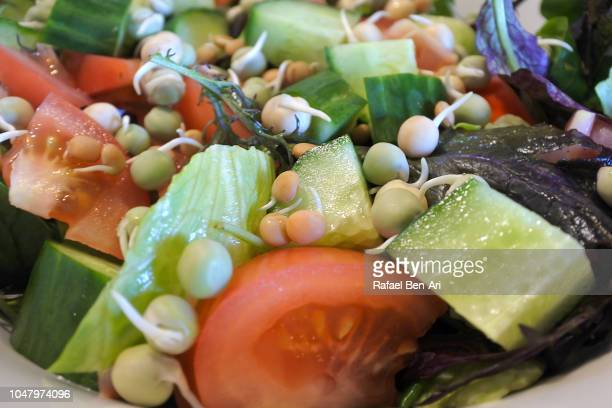 Fresh Green Salad Abstract Food Background and Texture