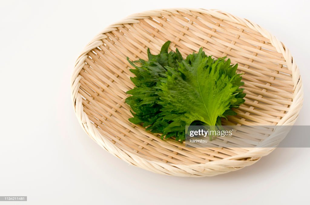 fresh green shiso (perilla)  or oba leaf on a bamboo colander on white background : Stock Photo