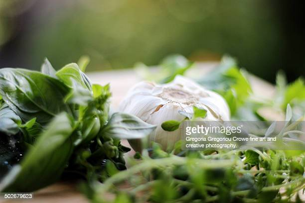 fresh herbs on chopping board - gregoria gregoriou crowe fine art and creative photography fotografías e imágenes de stock