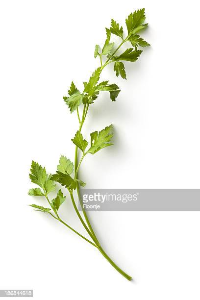 Fresh Herbs: Parsley
