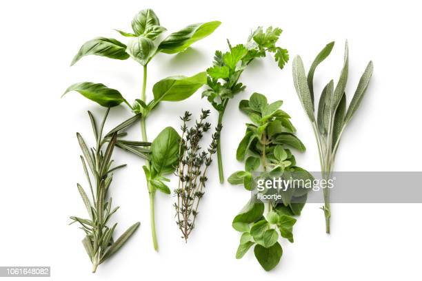 fresh herbs: rosemary, basil, thyme, parsley, oregano and sage isolated on white background - freshness stock pictures, royalty-free photos & images