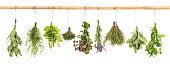 Fresh herbs white background basil sage thyme mint bay laurel