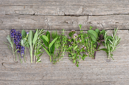 Fresh herbs wooden kitchen table Food background 882291278