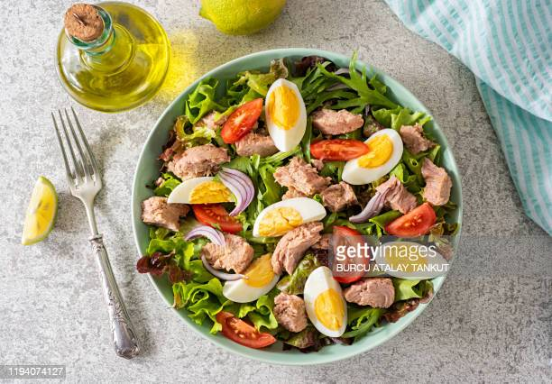 fresh homemade tuna salad - low carb diet stock pictures, royalty-free photos & images