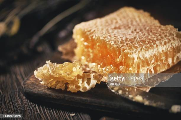fresh honeycomb just from beehive - honeycomb stock pictures, royalty-free photos & images