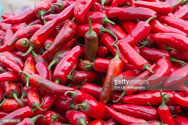 Fresh hot red chili peppers