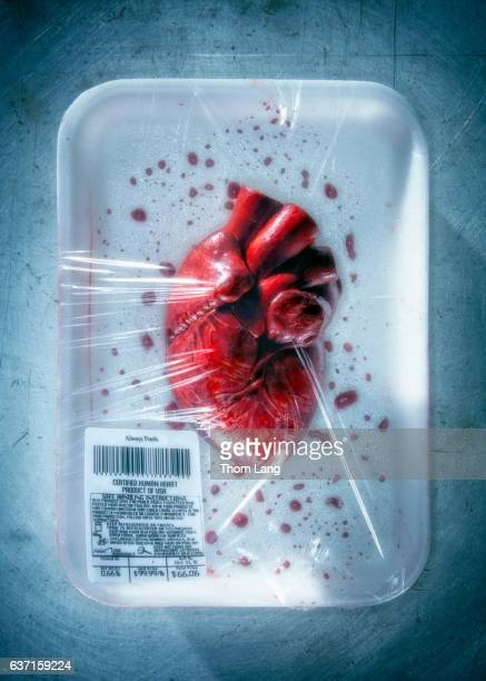 fresh human  heart - human heart stock pictures, royalty-free photos & images