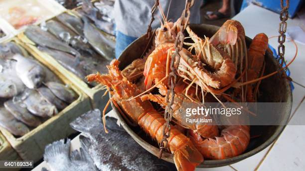 fresh lobster at seafood market - lobster fishing stock photos and pictures