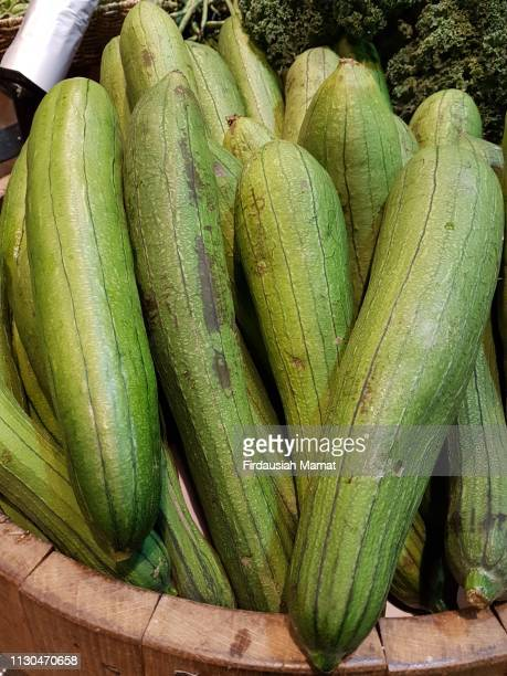 fresh luffa, loofa vegetables - loofah stock photos and pictures