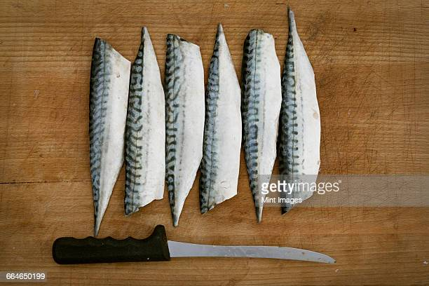 fresh mackerel fillets and a knife on a chopping board. - mackerel stock pictures, royalty-free photos & images