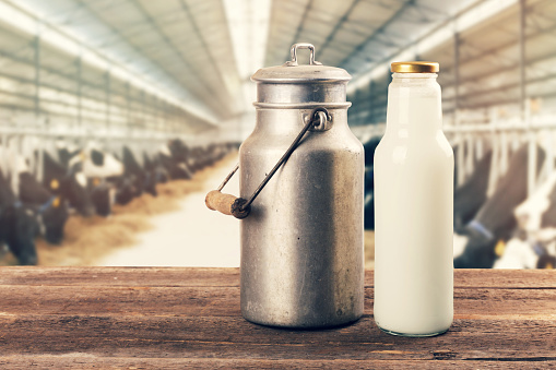 fresh milk bottle and can on the table in cowshed 641354232