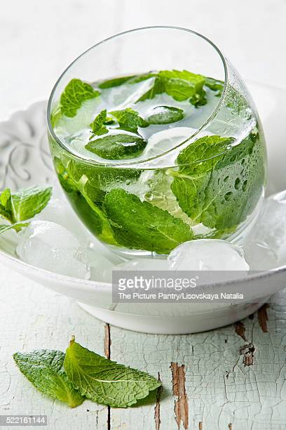 Fresh mint drink with ice