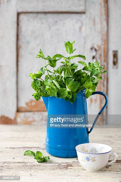 Fresh mint from garden in blue teapot