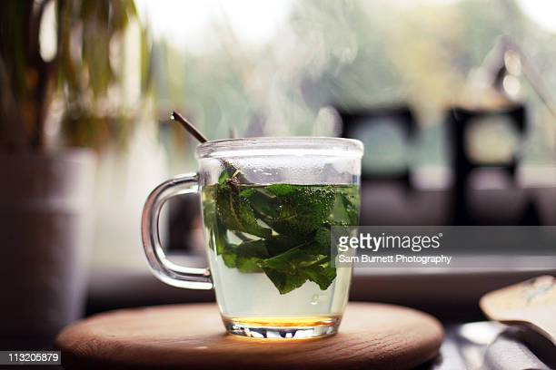 fresh mint tea - herbal tea stock pictures, royalty-free photos & images