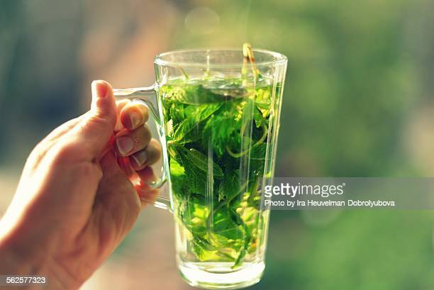 fresh mint tea - moroccan culture stock photos and pictures