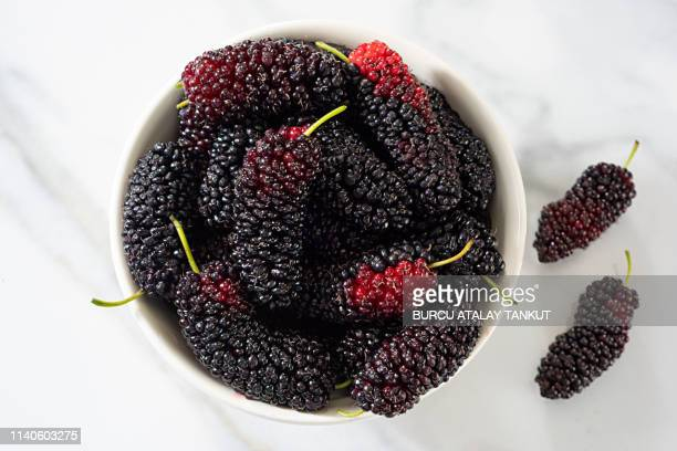 fresh mulberries - mulberry tree stock pictures, royalty-free photos & images