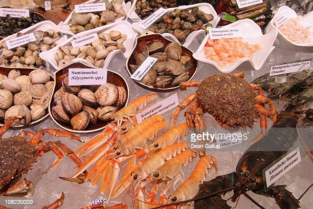 Fresh ocean shellfish crabs shrimp and lobster lie on display on ice at a stand at the 2011 Gruene Woche international agricultural trade fair at...