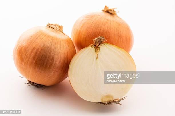 fresh onion - cebolla fotografías e imágenes de stock