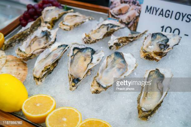 fresh opened oyster with sliced lemon offered as top view on crushed ice - miyagi prefecture stock pictures, royalty-free photos & images