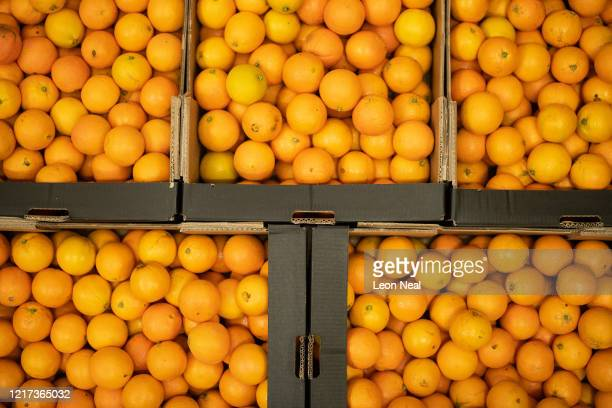 Fresh oranges are seen in crates as employees of the highend fresh food wholesaler Natoora pick orders for home deliveries after the company decided...