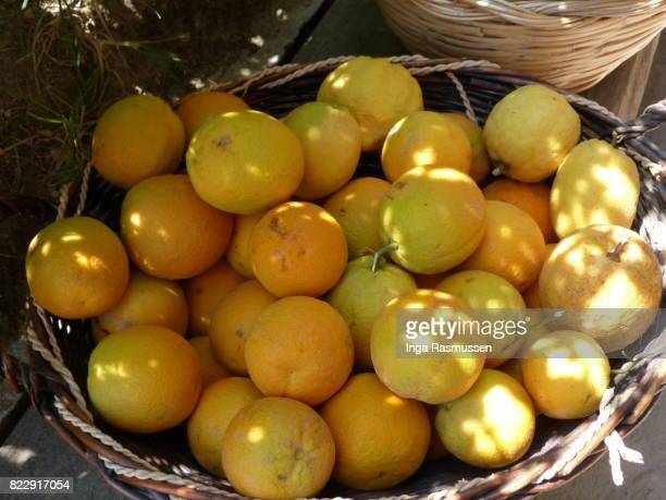 Fresh oranges in basket, Ischia, Italy