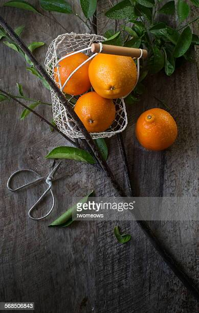 Fresh oranges on rustic wooden background