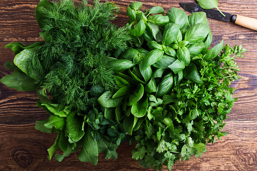 Fresh organic aromatic and culinary herbs - gettyimageskorea