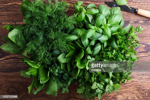 fresh organic aromatic and culinary herbs - freshness stockfoto's en -beelden