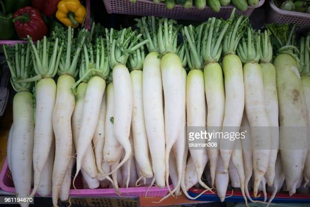 fresh organic big daikon vegetable - dikon radish stock photos and pictures