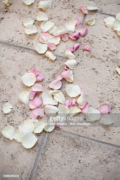 fresh organic confetti, natural pink dried rose petals on the ground. traditional wedding custom. - utah wedding stock pictures, royalty-free photos & images