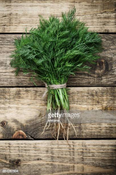 Fresh organic dill over wooden background