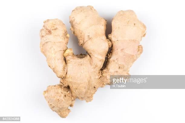 fresh organic ginger - ginger stock-fotos und bilder