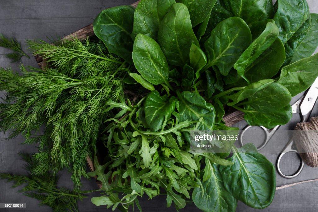 Fresh organic herbs and leaf vegetables : Stock Photo