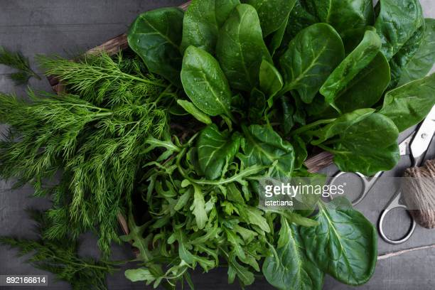 fresh organic herbs and leaf vegetables - leaf vegetable stock pictures, royalty-free photos & images