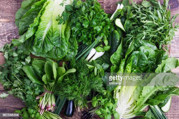 Fresh organic homegrown herbs and leaf vegetables background