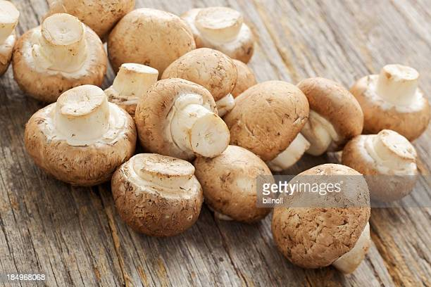 Fresh organic mushrooms on rustic table