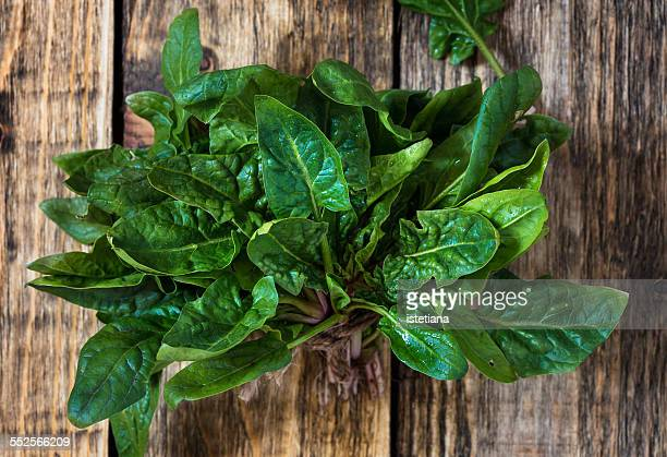 fresh organic spinach on wooden background - spinach stock photos and pictures