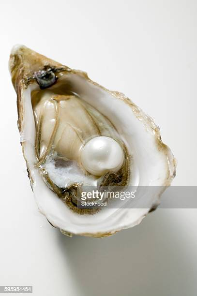 fresh oyster with pearl - oyster pearl - fotografias e filmes do acervo