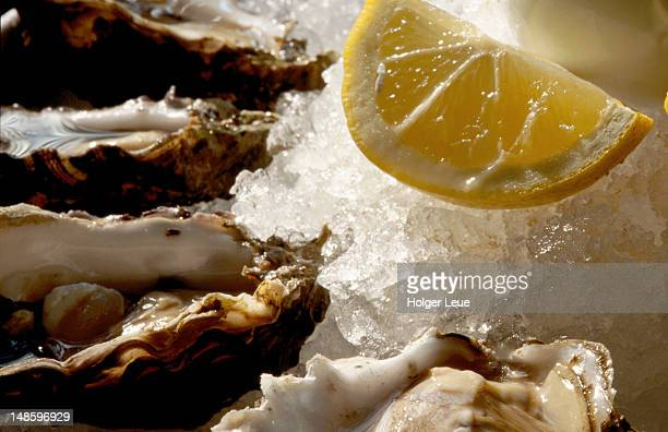 Fresh oysters on the half shell at Bayswater Brasserie, Kings Cross.