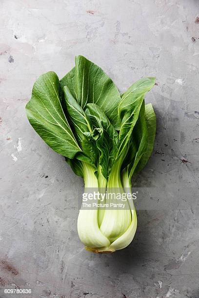 Fresh Pak choi cabbage on gray concrete stone background