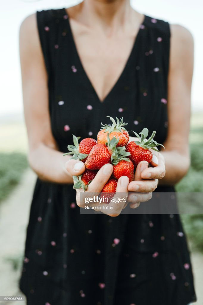 Fresh picked strawberries hold in woman's hand : Stock Photo