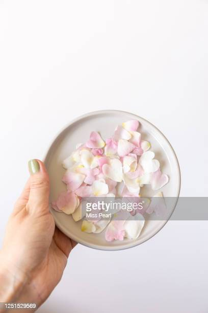 fresh pink rose petals on a plate - kildare stock pictures, royalty-free photos & images