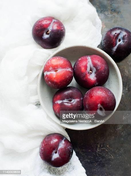 fresh plums, still life - ciruela fotografías e imágenes de stock